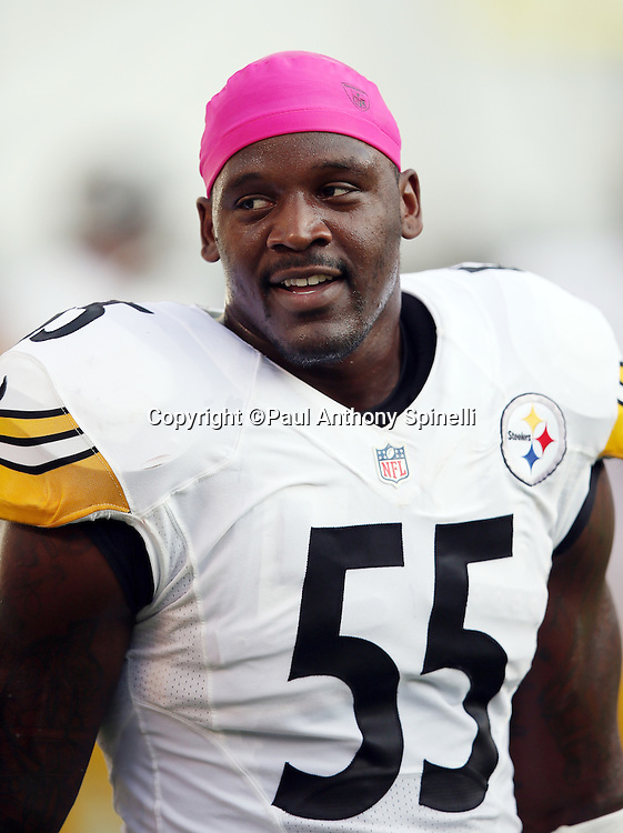 Pittsburgh Steelers outside linebacker Arthur Moats (55) looks on from the sideline during the 2015 NFL week 5 regular season football game against the San Diego Chargers on Monday, Oct. 12, 2015 in San Diego. The Steelers won the game 24-20. (©Paul Anthony Spinelli)