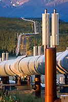 Alaska oil pipeline running through the central Alaska Range