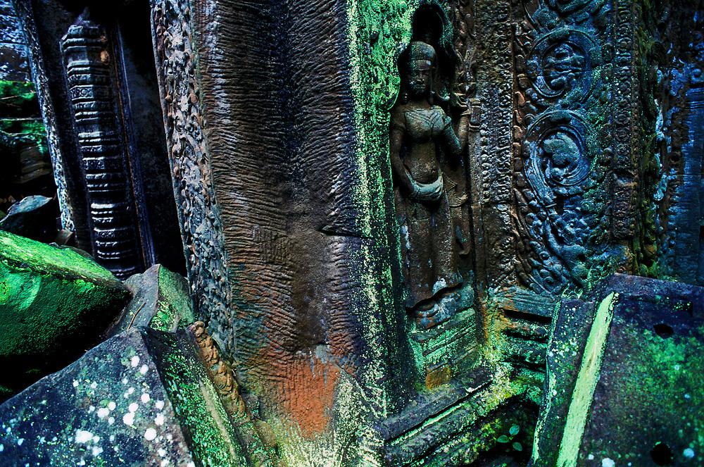 CAMBODIA: Angkor Wat.The temples of Angkor Wat: Ta Prohm