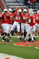 13 October 2012: lechein neblett catches a pass for a touchdown and celebrates with teammates during an NCAA football game between the Youngstown State Penguins and the Illinois State Redbirds.  The Redbirds won the game by a score of 35-28 at Hancock Stadium in Normal Illinois