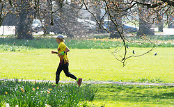 © Licensed to London News Pictures. 29/03/2019.<br /> Greenwich, UK. A runner keeping fit on a sunny day, Bright and warm sunny spring weather today in Greenwich Park, Greenwich, London.  Photo credit: Grant Falvey/LNP
