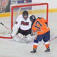 01-28-2016 Park Hockey