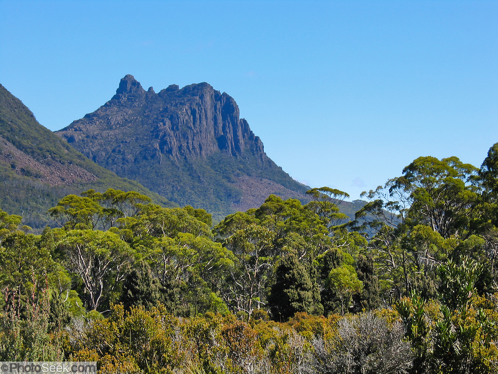 Mountains rise above the Overland Track, in Cradle Mountain-Lake St Clair National Park, Tasmania, Australia. The most extensive dolerite formations in the world dominate the landscape of Tasmania, where magma intruded into a thin veneer of Permian and Triassic rocks over perhaps a million years during the Jurassic breakup of supercontinent Gondwana in the Southern Hemisphere, forming vast dolerite/diabase sills and dike swarms. (North American geologists use the term diabase instead of dolerite to refer to the fresh, unaltered rock.) The Tasmanian Wilderness was honored as a UNESCO World Heritage Site in 1982, expanded in 1989. The famous Overland Track features mountains, temperate rainforest, wild rivers, alpine plains, abundant birds, and other wildlife.