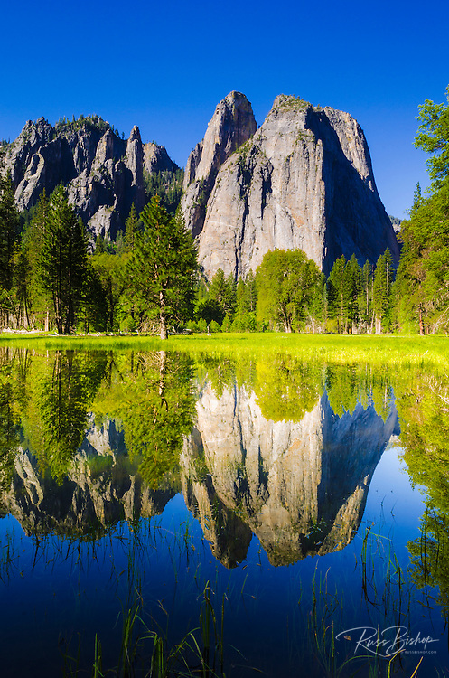 Cathedral Rocks reflected in pond, Yosemite National Park, California USA