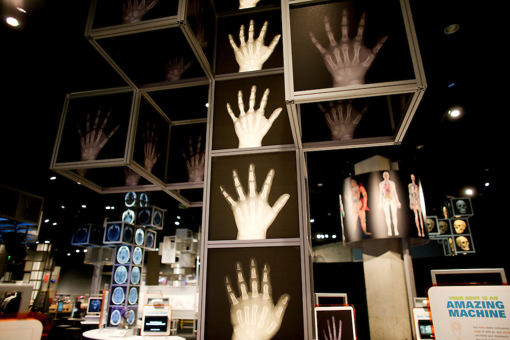 A view of the  Being Human Hall in the Perot Museum of Science and Nature in Dallas, Texas.