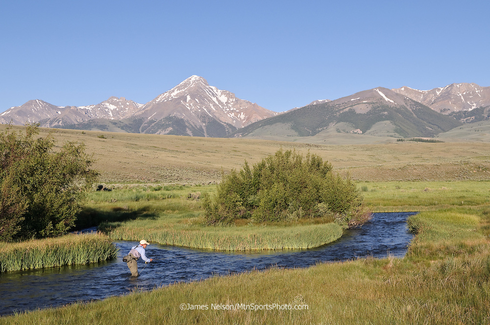 Fly fishing for trout on Birch Creek, Idaho.