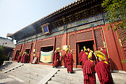 Yonghe Gong (Lama Temple). Yellow hat monks.