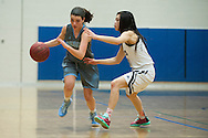 South Burlington's Joan Vera (4) drives past Burlington's Hien Thach (3) with the ball during the girls basketball game between the South Burlington Rebels and the Burlington Sea Horses at Burlington High School on Tuesday night Febraury 2, 2016 in Burlington. (BRIAN JENKINS/for the FREE PRESS)