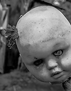 Enter Mexico's haunted 'Island of the Dolls' if you dare: Thousands of creepy toys hang from the trees to quell the tormented screams of a ghost of a little girl who drowned there<br /> <br /> Hundreds of photographers and thrill-seekers travel to the haunted Island of the Dolls every year, but it was never meant to be a tourist attraction. After a two-hour canal ride from Mexico City, they arrive at a nightmarish clearing deep in the woods where thousands of mutilated dolls hang from the trees and hide among the dense branches.<br /> They were put there by a reclusive Mexican man who believed they would appease the troubled ghost of a small girl who died there over 50 years ago - and still haunts the woods today.<br /> Julian Santana Barrera retreated to the woods soon after she drowned in the nearby canal. He claimed he could hear her tormented screams and footsteps in the darkness.<br /> Even today - 14 years after his own mysterious death in those woods - visitors say they hear whispers in the night and feel the dolls' eyes following them through the trees.<br /> <br /> Barrera found the girl's corpse floating in the canal and blamed himself for not being able to save her life, according to the so-called Isla de las Munecas' official website.<br /> He later discovered a doll floating in the same waters and, assuming it belonged to the deceased girl, hung it from a tree as a sign of respect. His descent into madness began with this seemingly innocent act. <br /> Barrera began to hear whispers, footsteps and the anguished wails of a woman in the darkness even though his hut - hidden deep inside the woods of Xochimilco - was miles away from civilisation.<br /> Driven by fear, he hung the dismembered toys from the trees to protect himself from her ghost and spent the next 50 years 'decorating' the woods in a desperate attempt to appease her.<br /> He hung hundreds of toys - some missing body parts - from the trees and the wire fencing which surrounded his wooden shack.<br /> <br /> Barrera lived a hermit's life in those woods until 2001 wh