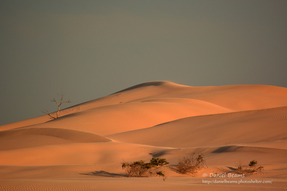 Sand dunes on the Parapeti River, Isosog, Santa Cruz, Bolivia