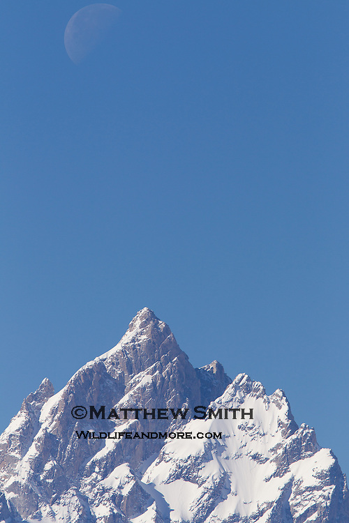 Grand Teton snow covered peak with the moon visible above