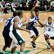Jan. 19, 2009 - Bronx, NY : The Manhattan College Jaspers face off at home against the St. Peters Peacocks..With the ball (right) is Manhattan College sophomore guard, Chris Smith