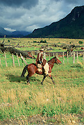 Cohaique Area, Region De Aisen, Patagonia, Chile,(no model release, editorial use only)<br />