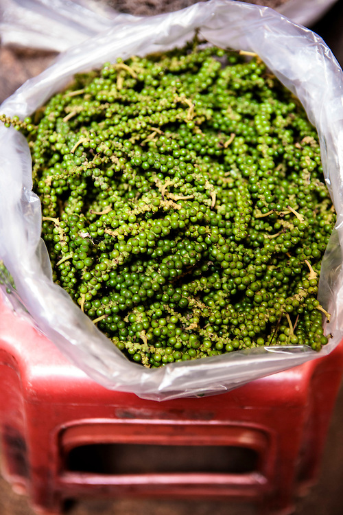 Green Kampot peppercorns at central market in Kampot