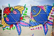 Mar 25, 2009 -- BANGKOK, THAILAND: Thai fighting kites for sale at a stand on Sanam Luang, the Royal Parade Ground in Bangkok.  Photo by Jack Kurtz