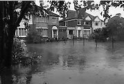 "Flooding at the Dodder..1986..26.08.1986..08.26.1986..28th August 1986..As a result of Hurricane Charly (Charlie) heavy overnight rainfall was the cause of severe flooding in the Donnybrook/Ballsbridge areas of Dublin. In a period of just 12 hours it was stated that 8 inches of rain had fallen. The Dodder,long regarded as a ""Flashy"" river, burst its banks and caused great hardship to families in the 300 or so homes which were flooded. Council workers and the Fire Brigades did their best to try and alleviate some of the problems by removing debris and pumping out some of the homes affected..Note: ""Flashy"" is a term given to a river which is prone to flooding as a result of heavy or sustained rainfall...Image shows some of the devastation caused by the rising water..These houses were sited on the Lr. Dodder Road, Rathfarnham."