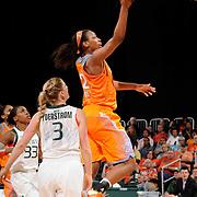 2013 NCAA Women's Basketball