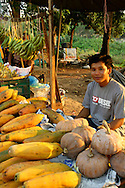 Papaya Vendor, Vientiane - Though Laos is not a very wealthy country, it has a huge variety of produce available for a song.  This has kept Laotians well fed, along with the bounty of the Mekong River to supplement the diet with protein.