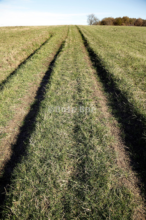 tracks in agricultural grass field