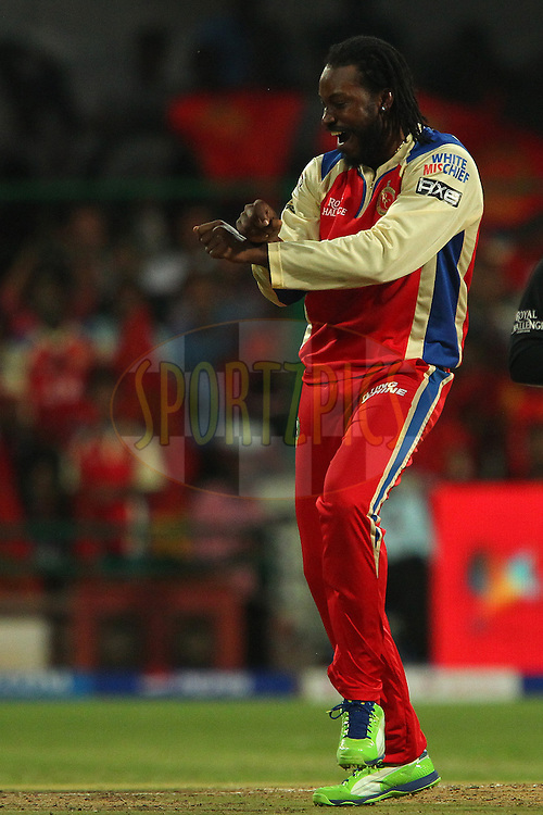 Chris Gayle celebrates the wicket of Manish Pandey during match 31 of the Pepsi Indian Premier League between The Royal Challengers Bangalore and The Pune Warriors India held at the M. Chinnaswamy Stadium, Bengaluru  on the 23rd April 2013..Photo by Ron Gaunt-IPL-SPORTZPICS ..Use of this image is subject to the terms and conditions as outlined by the BCCI. These terms can be found by following this link:..http://www.sportzpics.co.za/image/I0000SoRagM2cIEc