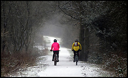 Snow falls in Epping Forest, Essex, Friday January 18, 2013. Photo: Andrew Parsons / i-Images