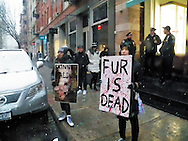 Today Hundreds of Anti-Fur activist took to the streets of New York City for the Anti For March, which began at Madison Square park, the group of around 300 people which included members of CAAF, LION, PETA animal right and anti-fur groups, marched to the flagship store of Canada Goose which has been a target since they opened there store in SOHO, for their treatment of animals in the making of there coats. The store itself is feeling the effect of the protest as sales have been way below expected for the location, and some believe it may be on its way to being shut down. Credit: Mark Apollo/Hashtag Occupy Media