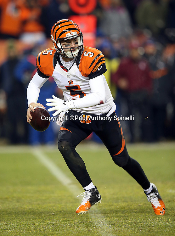 Cincinnati Bengals quarterback AJ McCarron (5) rolls to his right while looking to pass in the fourth quarter during the 2015 NFL week 16 regular season football game against the Denver Broncos on Monday, Dec. 28, 2015 in Denver. The Broncos won the game in overtime 20-17. (©Paul Anthony Spinelli)