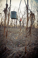 HUNTER CLIMBING INTO AN ELEVATED HUNTING BLIND