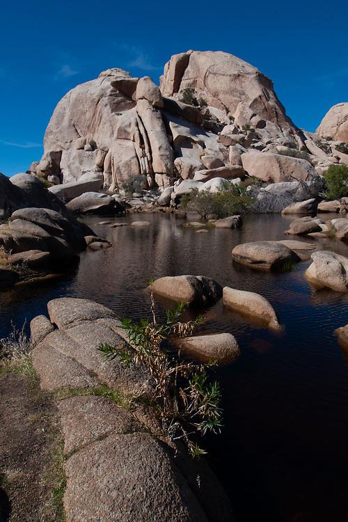 Barker Dam, Joshua Tree National Park, California