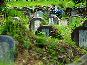 30 AUGUST 2018 - BANGKOK, THAILAND: A man on a motor scooter in Tae Chio Cemetery in Yan Nawa District of Bangkok. It is a cemetery for Bangkok's Chinese community.     PHOTO BY JACK KURTZ