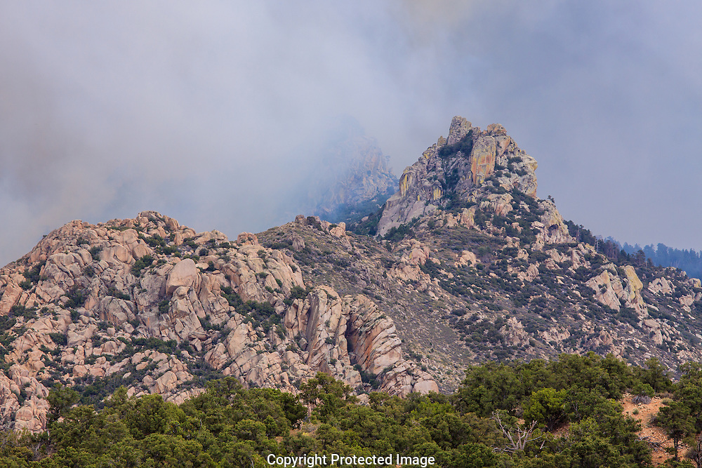 Within hours of the lightening strike, the Dean Peak wildfire, began to spread across the Hualapai Mountains near Kingman, Arizona