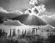 Vietnam Images-Landscape-Nature-sunset-Sapa Hoàng thế Nhiệm