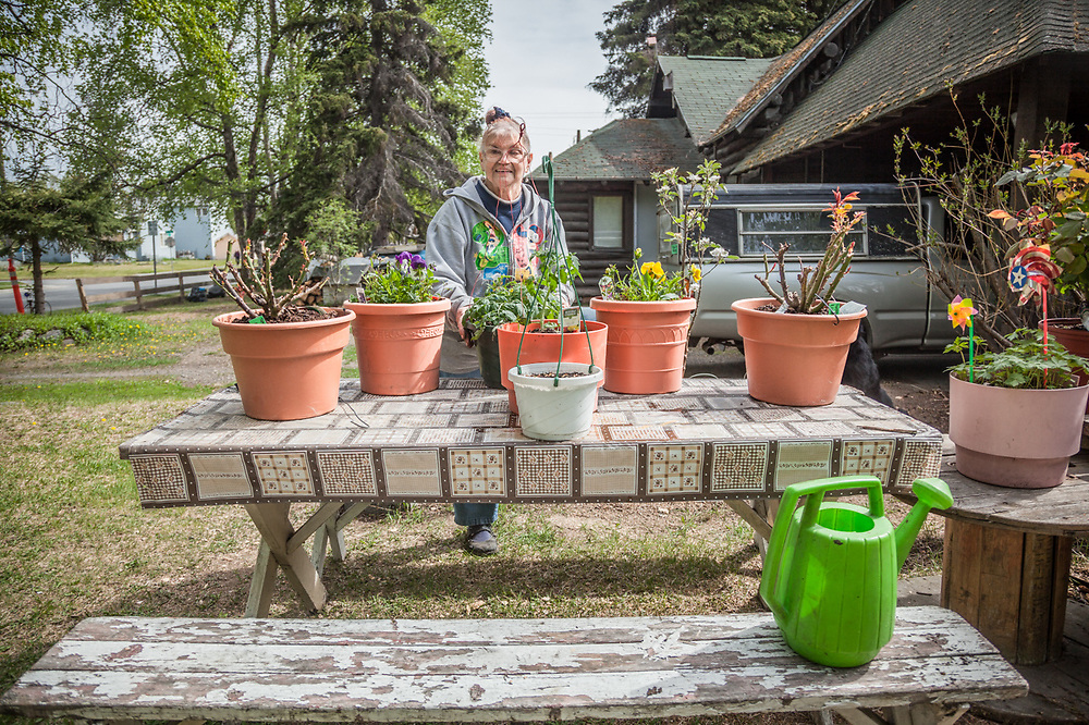 "South Addition Neighbor Irene Spykhoven prepares her plants for summer.  ""I have lived in this house since 1969...this is my favorite season."""
