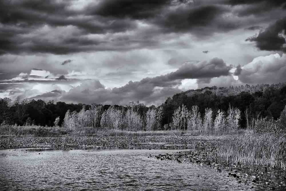 Overlooking the Herb Kebbel Wetlands