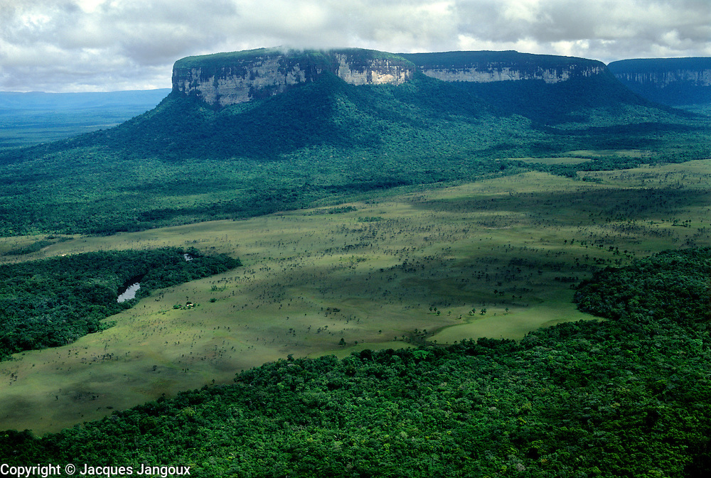 Aerial of table mountain called Tepui with savanna grassland and forest gallery, Guiana Highlands, Guiana shield, Pre-Cambrian geological formation, La Gran Sabana region, Canaima National Park, Bolivar State, Venezuela