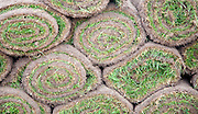 Rolls of grass turf in a pile close up, UK