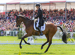 Dirk Schrade and KING ARTUS lie in second place after the Dressage phase of the Mitsubishi Motors Badminton Horse Trials, Saturday May 4th 2013. Photo by:  Nico Morgan / i-Images