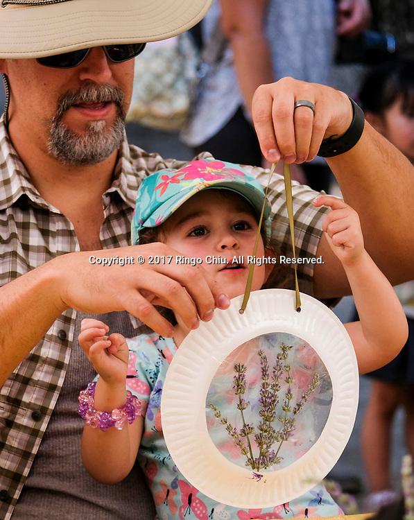 6月17日,民众用薰衣草制作手工品。当日,在美国加利福尼亚州樱桃谷,举办了第十三届薰衣草节,吸引大批民众前往观赏。新华社发 (赵汉荣摄)<br /> Visitors make their own lavender bouquets at Highland Spring Ranch during the 13rd Annual Lavender Festival in Cherry Valley, California, the United States, June 17, 2017.(Xinhua/Zhao Hanrong)(Photo by Ringo Chiu)<br /> <br /> Usage Notes: This content is intended for editorial use only. For other uses, additional clearances may be required.