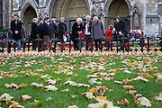 Relatives and friends pay respects to fallen soldiers, seen during Remembrance weekend at Westminster Abbey, London.