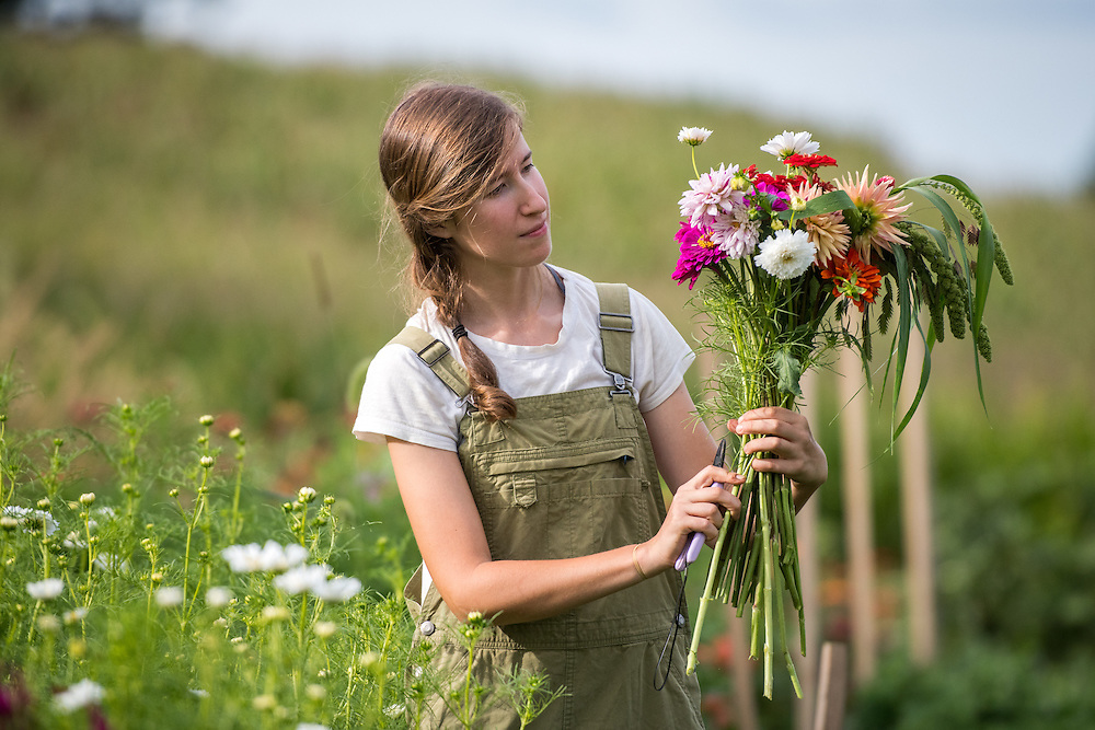 Woman stands in a garden pruning a bouquet of fresh flowers on a farm in rural Maryland.