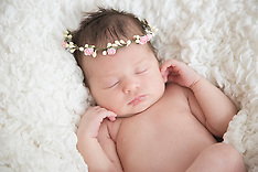 Evelyn's Newborn Session