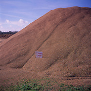 A3AAMA Pile of 5mm grit Wangford quarry Suffolk. Image shot 2006. Exact date unknown.