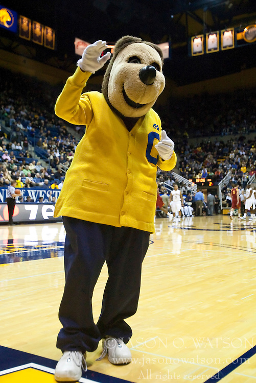 January 9, 2010; Berkeley, CA, USA;  The California Golden Bears mascot during the first half against the Southern California Trojans at the Haas Pavilion.  California defeated USC 67-59.