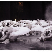 Boston Ballet corps dancers in Mikko Nissinen's 'Swan Lake'