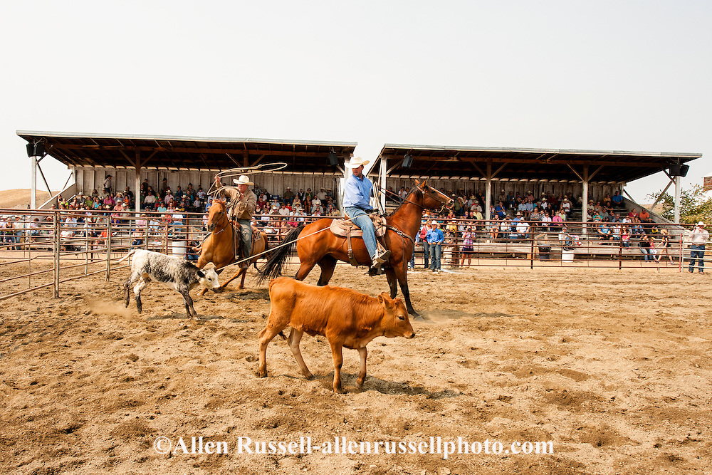 Wilsall Ranch Rodeo, Calf Branding Competition, Cleve Swandal, Dusty Holland, Lazy SR Ranch team, Montana.
