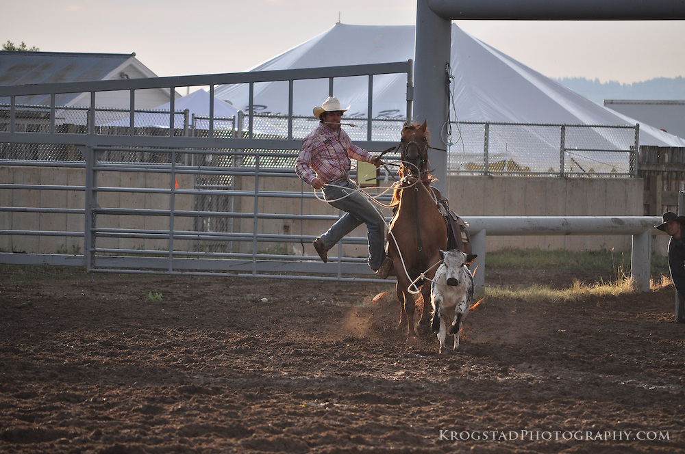Rodeo, Montana, bull riding, horse riding, broncs, saddle bronc, bareback, roping, cowboy, cowboys, western way of life, west, bull clinic, bull fighting, chutes