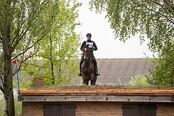 Sterkens Peter, BEL, Enzo G<br /> LRV Nationale finale AVEVE Eventing Cup voor Paarden - Minderhout 2018<br /> © Hippo Foto - Dirk Caremans<br /> 29/04/2018