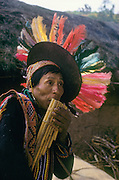 Quechua Indian playing the siku (zampoña, panpipe) flute at a festival in Ayata a village in the Andes, Bolivia, South America.