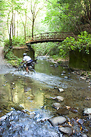 Man mountain biking on trail through redwoods in Santa Cruz, CA