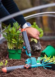 THEMENBILD - verschiedene Gartengeräte auf einem Beet, aufgenommen am 10. April 2018 in Kaprun, Österreich // various garden tools on a bed, Kaprun, Austria on 2018/04/10. EXPA Pictures © 2018, PhotoCredit: EXPA/ JFK